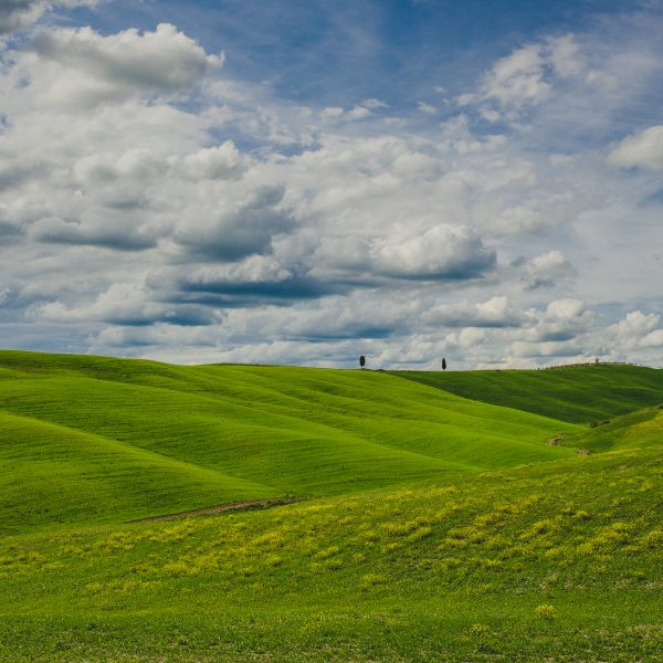 Tuscany Part 1- The countryside