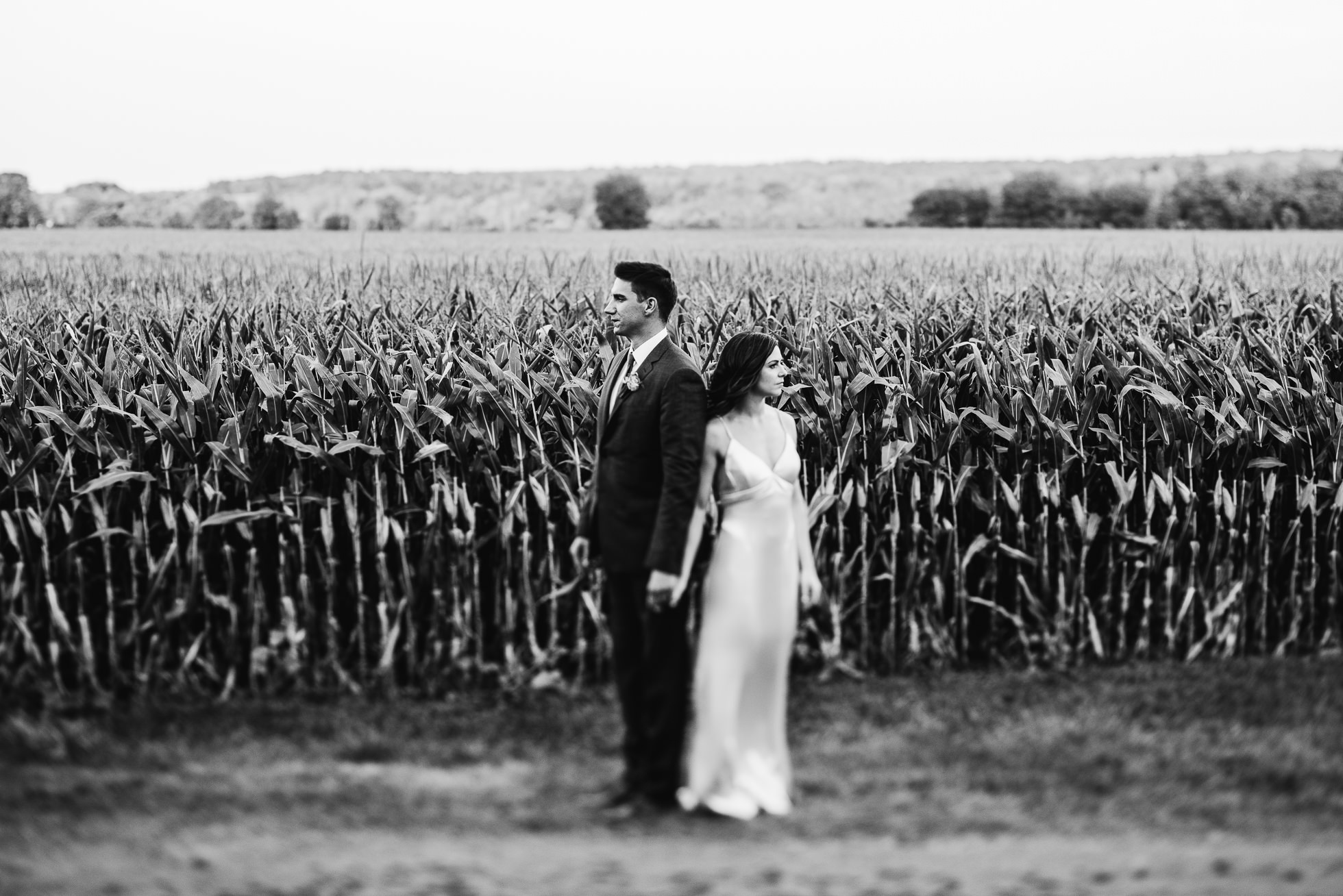 bride and groom portrait near corn field at olde tater barn wedding in central bridge, ny photographed by traverse the tides
