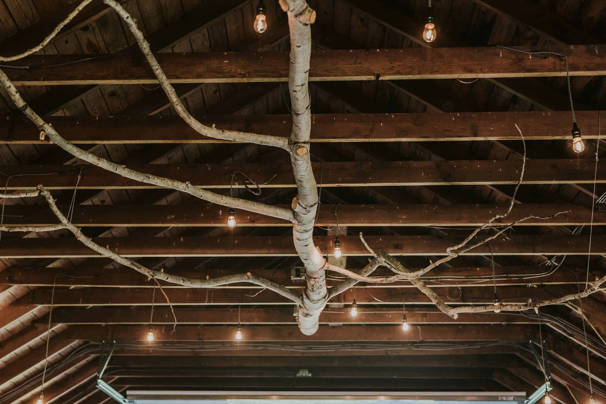 rustic ceremony decor photographed by Traverse the Tides