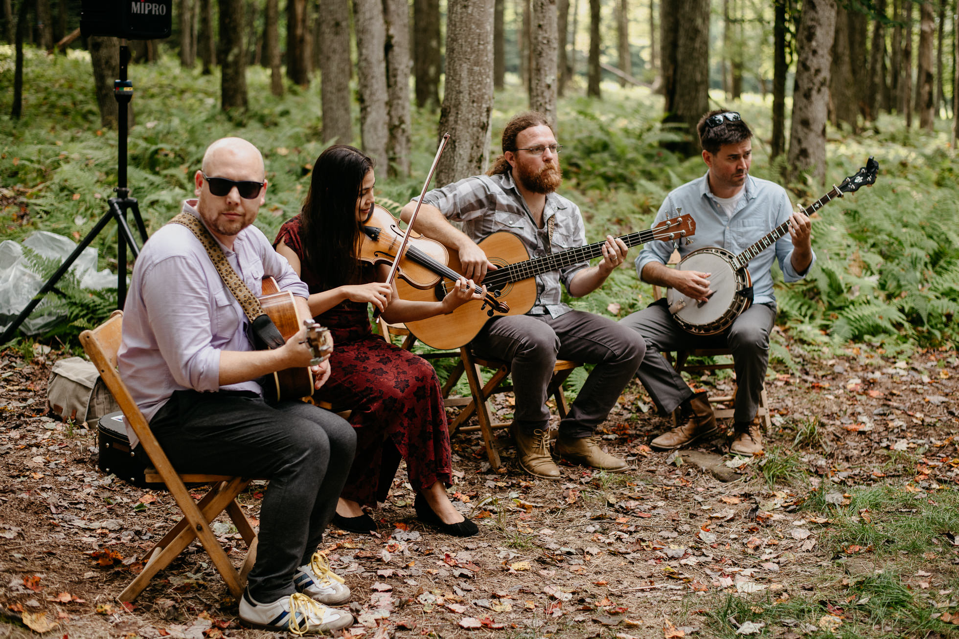 bluegrass wedding band
