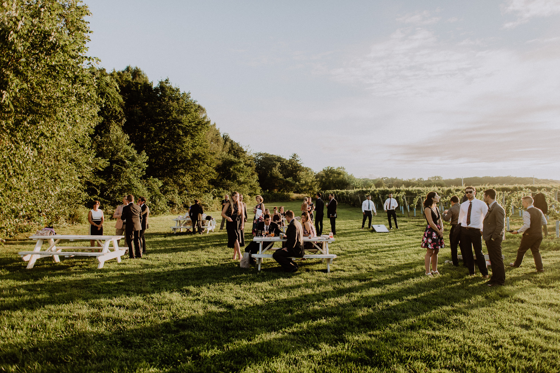 Bedell Cellars outdoor wedding reception